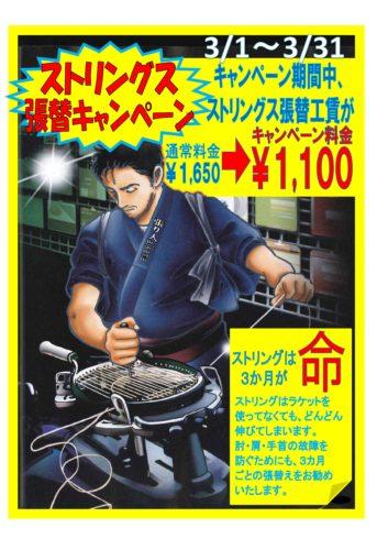 -353x500 2019年度!最後のストリングキャンペーン!!